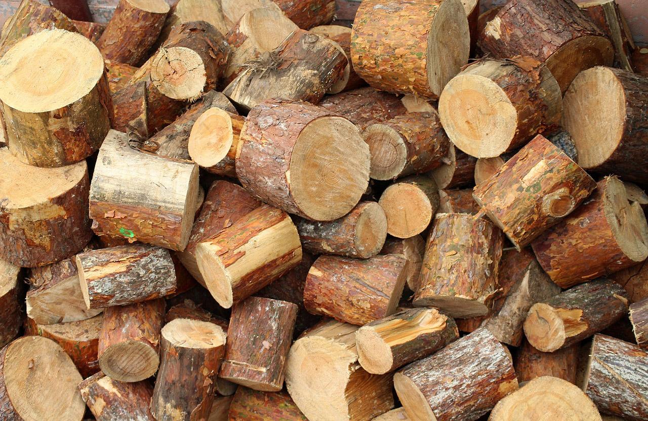 wywóz drewna i gałęzi kraków